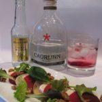 Gin Tonic Foodpairing – Caorunn