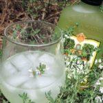 Wodka – Limoncello – Tijm