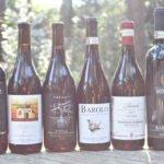 Wijnboeren in La Morra – Piemonte